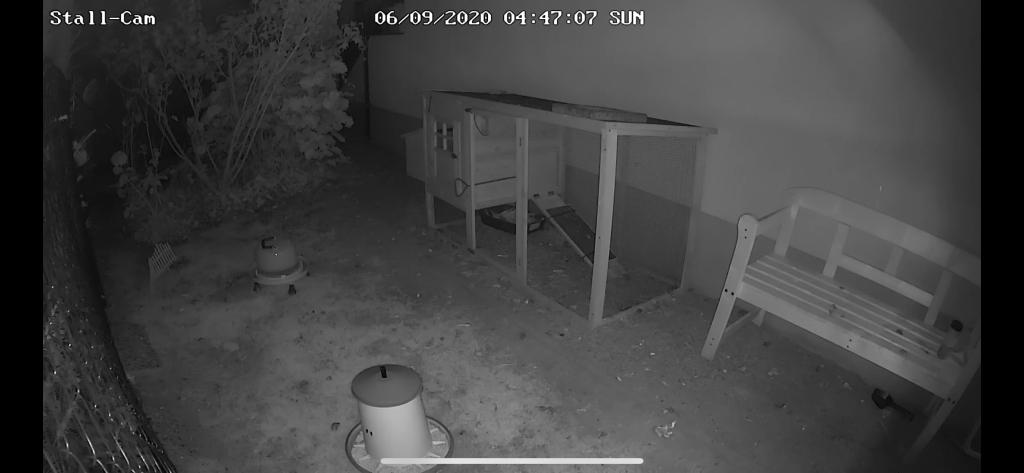 Hühnerstall Webcam Kamera Hühnerstall nachts Hühnergehege in der Nacht